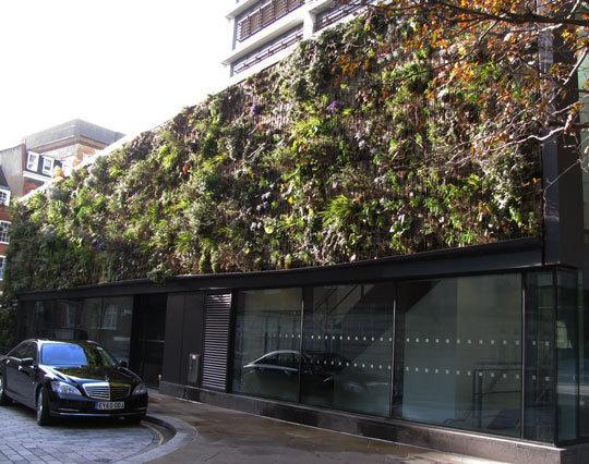 London Green Wall 2