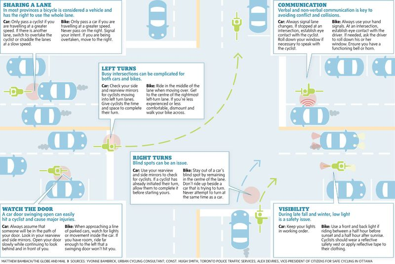 Bikes and cars infographic