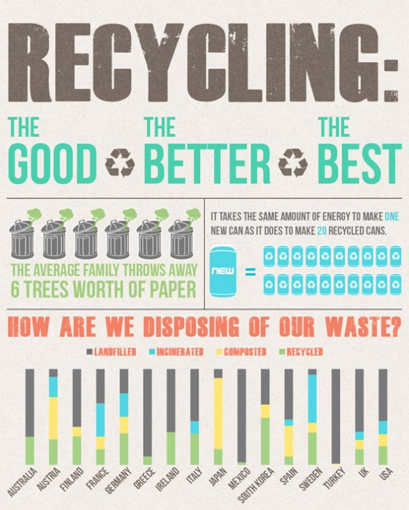 Recycling Waste Infographic