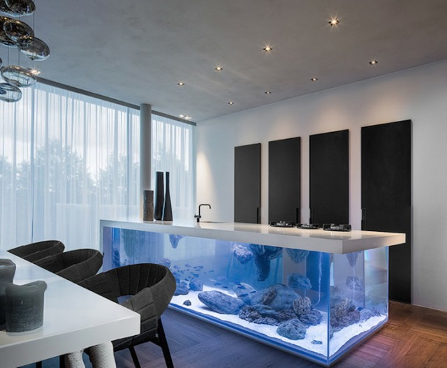 Modern kitchen with aquarium