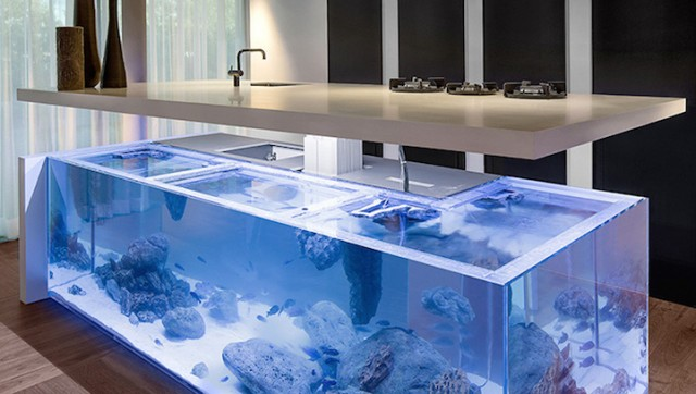 Modern kitchen with aquarium to work in harmony