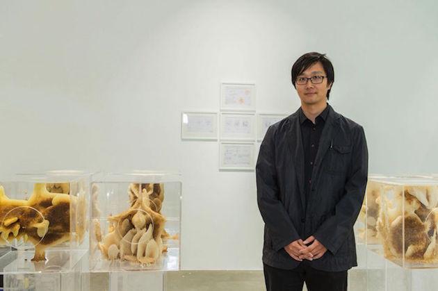 Ren Ri Chinese artist