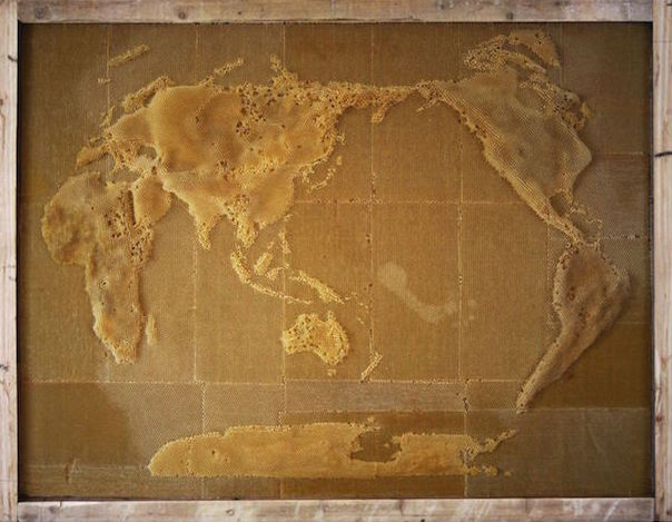Ren Ri Maps of the World - Beeswax