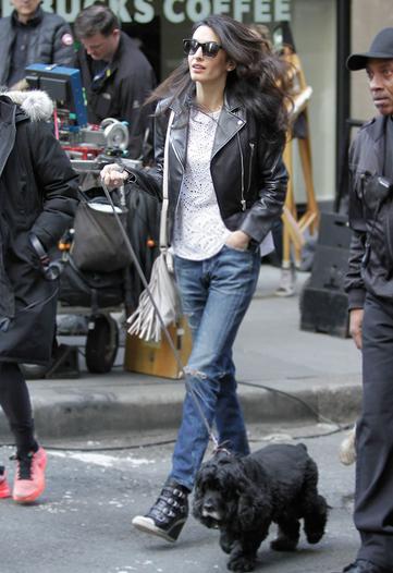 Amal Clooney walking dog